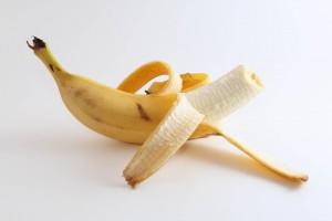 «Conocidos por sus frutos»